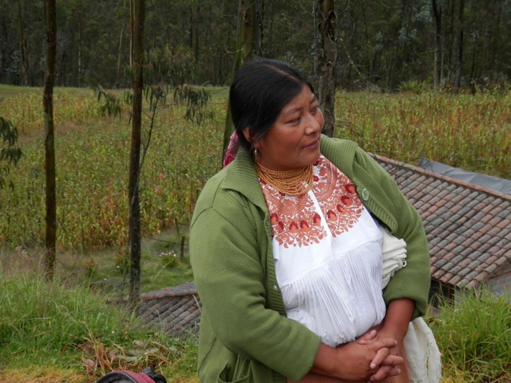Nettles, Herbal Medicine, Plant Spirit Medicine